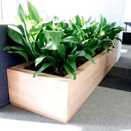 accessories-bespoke-office-planter