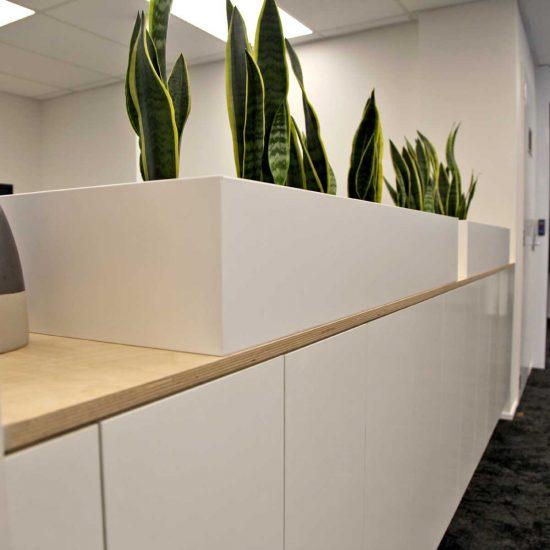 accessories-bespoke-office-planter2